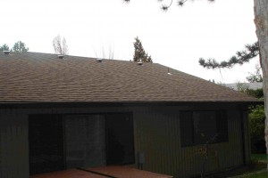 Finished Composition Roof Tear Off Project