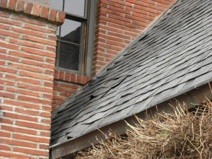 Don't wait too long for needed roof repairs