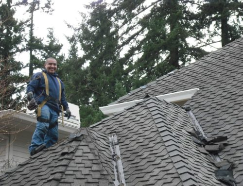 Things You Should Know About Roof Repairs, But Probably Don't