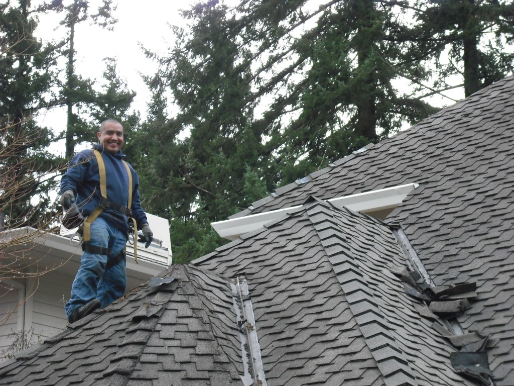 Roof Repair Can Be A Viable Option To A New Roof