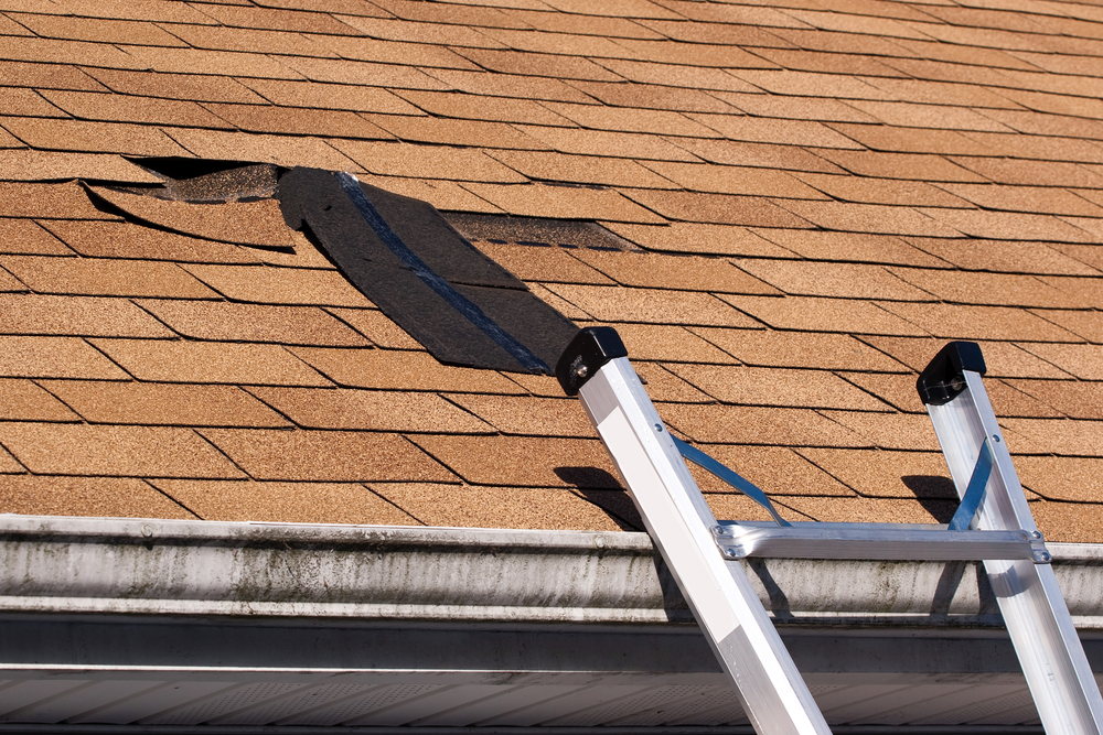 Will My Roof Leak With One Shingle Missing?